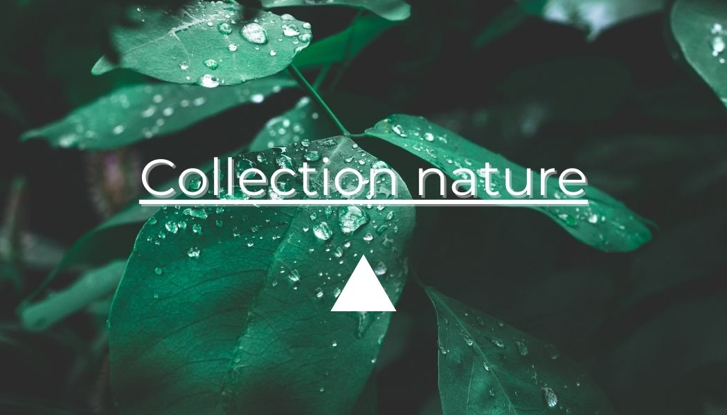 collection objets nature