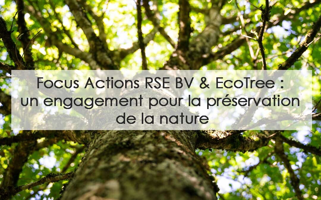 Actions RSE BV